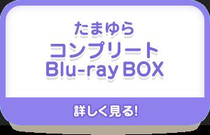 たまゆら コンプリートBlu-ray BOX